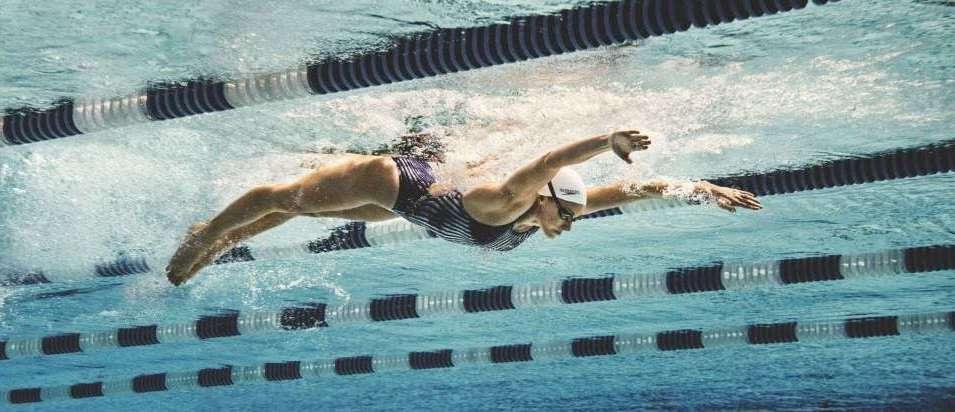 nuoto-delfino-tecnica